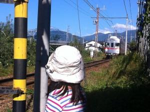 長野電鉄(元日比谷線車両)